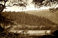 Napa Valley Window_sepia