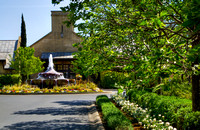 Franciscan Winery Summer 4