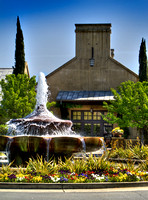 Franciscan Winery Summer 5