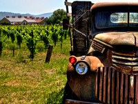 Old Truck In The Vineyards