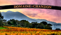 Domain Chandon