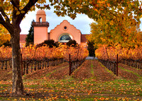 Groth Winery Fall